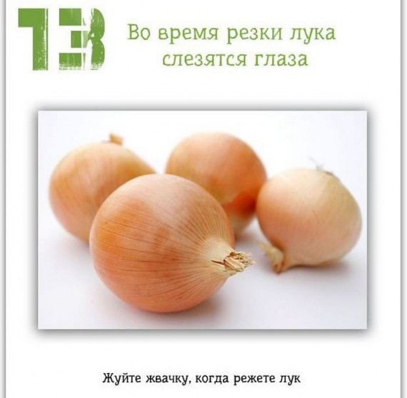 13 (570x558, 43Kb)