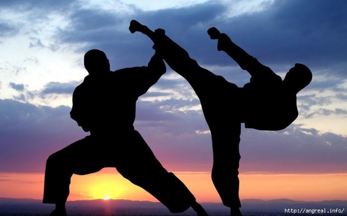 Интересные факты о боевых искусствах