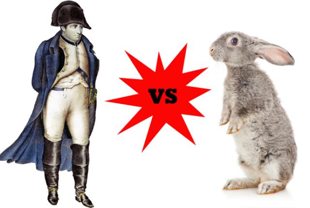 Как кролики  победили Наполеона
